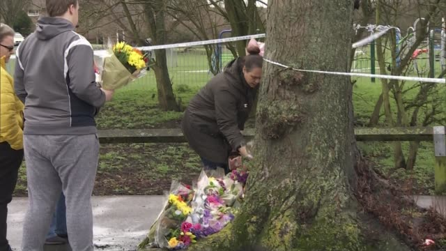 mother of 17yearold who was fatally stabbed in harold hill pays tribute uk london havering romford floral tributes and memorial at harold hill crime... - tree hugging stock videos & royalty-free footage