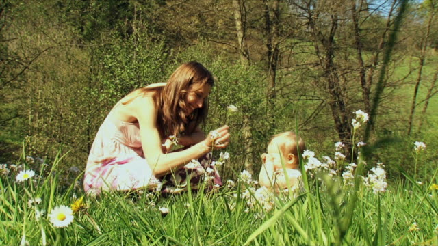 vidéos et rushes de ws mother playing with baby daughter (12-17 months) in meadow, marchin, belgium - 12 17 mois