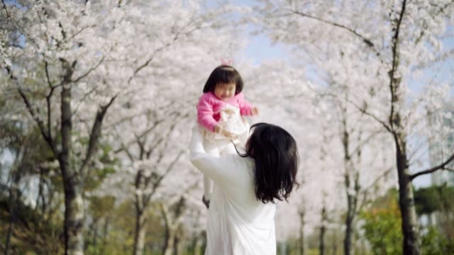 mother playing with baby girl under cherry blossom trees - korean ethnicity stock videos & royalty-free footage