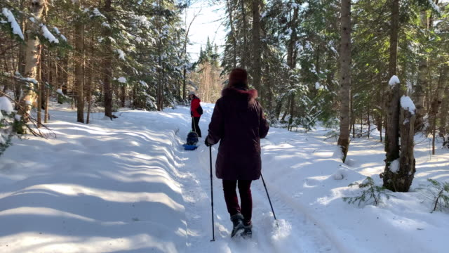 mother pulling son on sled in winter - sliding stock videos & royalty-free footage