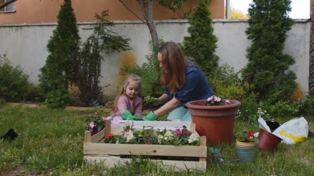 vidéos et rushes de mère enseignant à sa fille en bas âge comment jardiner et pot fleurs - gant de jardinage