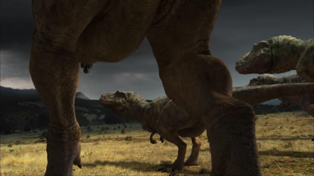 a mother tyrannosaurus rex howls menacingly. - extinct stock videos & royalty-free footage