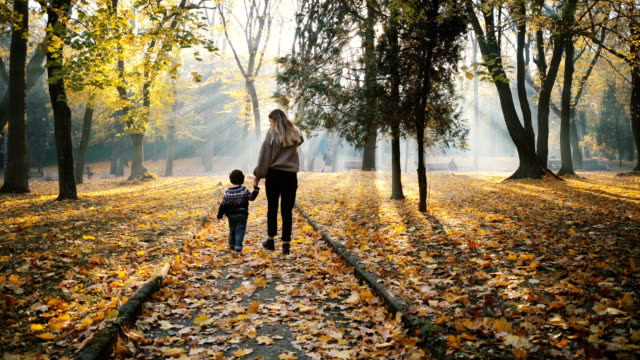 mother walking with little son in park in autumn - autumn stock videos & royalty-free footage