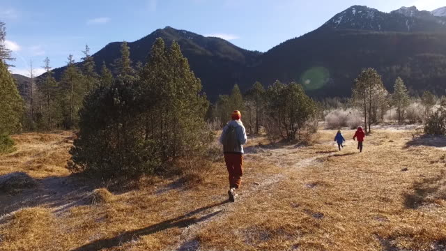 mother walking with their kids between frozen trees - karwendel mountains stock videos and b-roll footage
