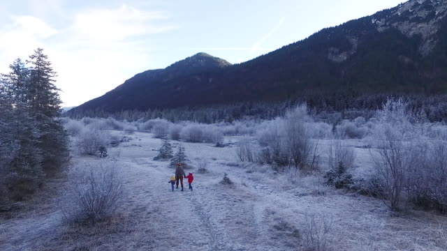 mother walking with their kids in a frozen landscape - karwendel mountains stock videos and b-roll footage