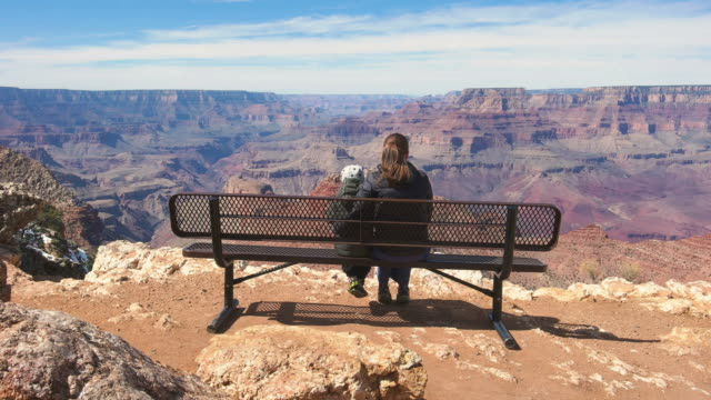 mother with child looking at view in grand canyon national park usa - grand canyon national park stock videos & royalty-free footage