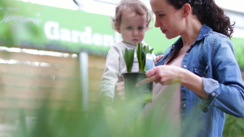 stockvideo's en b-roll-footage met mother with daughter at garden centre - shopping centre