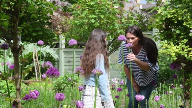 mother with two daughters in garden smelling purple flowers - smelling stock videos and b-roll footage