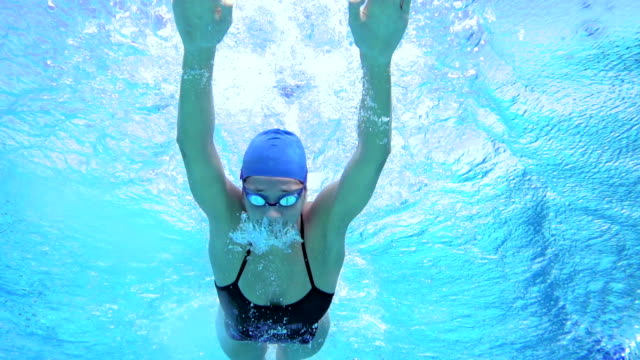 hd motion effect: young women swimming butterfly stroke - swimming goggles stock videos & royalty-free footage