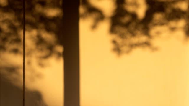 4 k uhd の壁に木の陰の動き - 影のみ点の映像素材/bロール