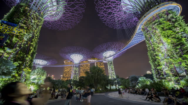 4k motion timelapse colorful wide angle view of garden by the bay at night, singapore - künstlich stock-videos und b-roll-filmmaterial