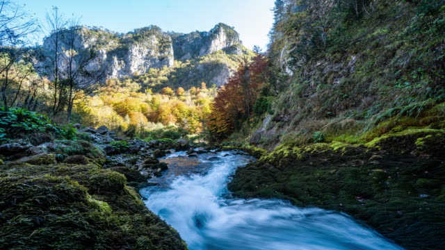 motion timelapse of mossy rocks near a river in durmitor national park - bach stock-videos und b-roll-filmmaterial