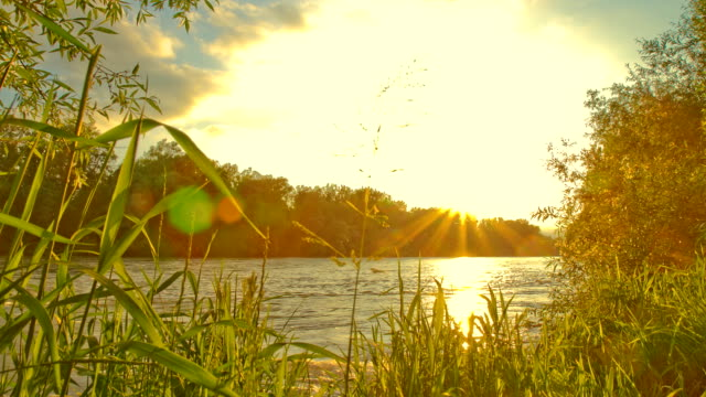 hd motion time-lapse: river at sunset - sunset to night stock videos & royalty-free footage