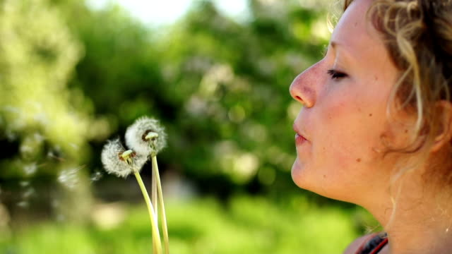 slow motion:blowing wishes - allergy stock videos and b-roll footage