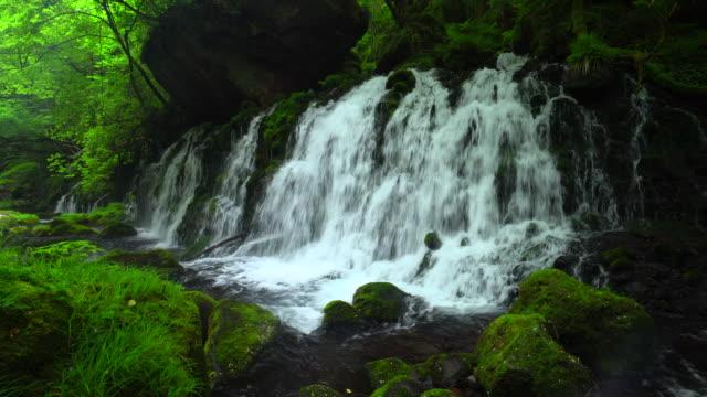 motodaki の滝 - 秋田県点の映像素材/bロール