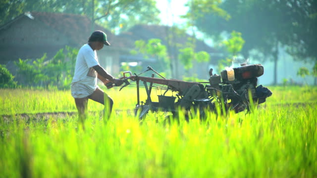 motor driven cultivator operated by indonesian man java - bewässerungsanlage stock-videos und b-roll-filmmaterial