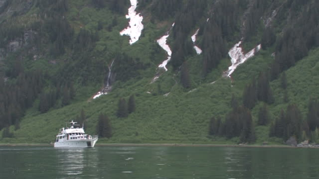ws, motorboat anchored in bay with forested hillside in background, glacier bay national park and preserve, alaska, usa - anchored stock videos & royalty-free footage