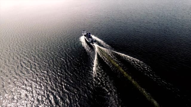 motorboat driving - aerial footage - barca a motore video stock e b–roll