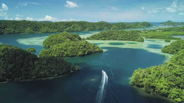 ws a motorboat navigates through the rock islands / koror, palau - motorboot stock-videos und b-roll-filmmaterial