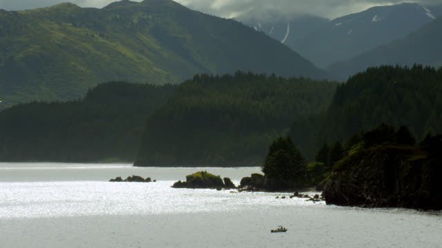 Motorboat Sails Near Lush Alaskan Coastline In Summer