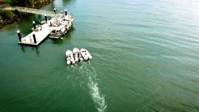 モーター ボートが岸に釘付け - 泡立つ波点の映像素材/bロール