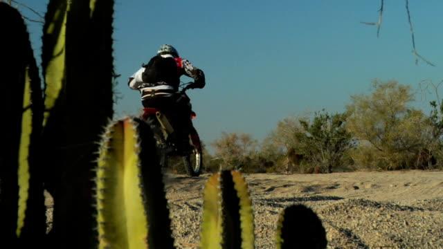 motorcross rider and cactus - baja california peninsula stock videos and b-roll footage