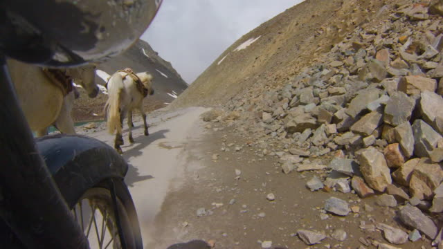 Motorcycle passes truck and horses on mountain road, Himalayas, India