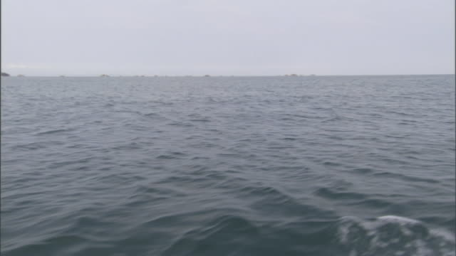 a motorized boat cruises over a body of water. - kryssa bildbanksvideor och videomaterial från bakom kulisserna