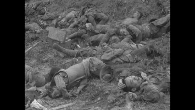 mounds of japanese corpses at the base of palm trees with american soldiers looking at them / note exact day not known - japanese military stock videos & royalty-free footage