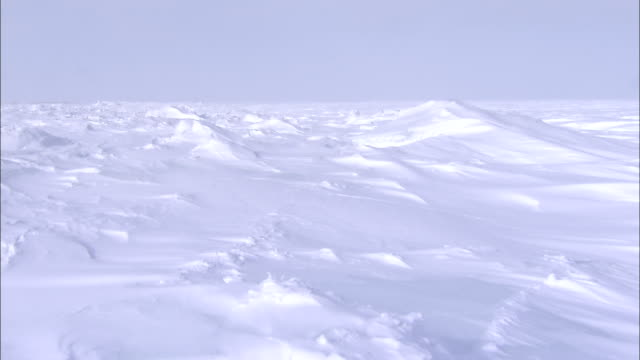 vidéos et rushes de mounds of snow cover the hudson bay area in winter. - neige fraîche