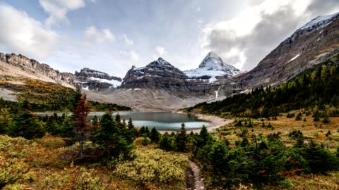 mount assiniboine im herbstwald am lake magog auf provincial park, bc, kanada - banff nationalpark stock-videos und b-roll-filmmaterial