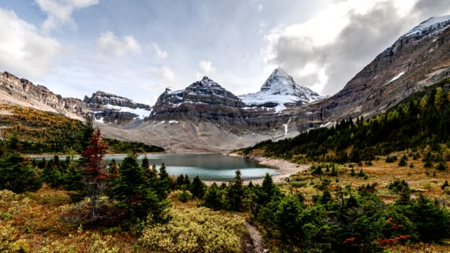 mount assiniboine in autumn forest at lake magog on provincial park, bc, canada - banff national park stock videos & royalty-free footage