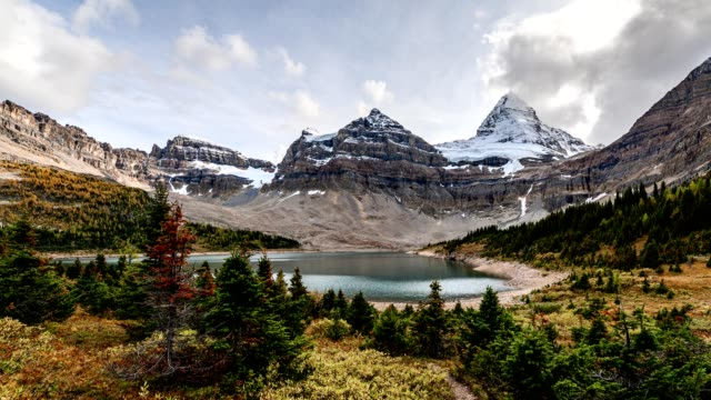 mount assiniboine in autumn forest at lake magog on provincial park, bc, canada - banff stock videos & royalty-free footage