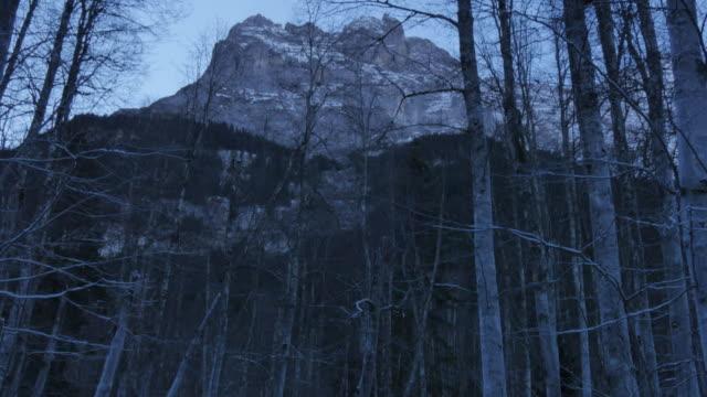 Mount Eiger and frozen woodland near Grindelwald, Bernese Oberland, Canton of Bern, Switzerland, Europe