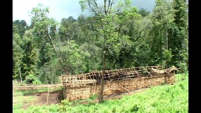 vídeos y material grabado en eventos de stock de mount elgon firedamaged abandon village after militia attack - volcán extinguido