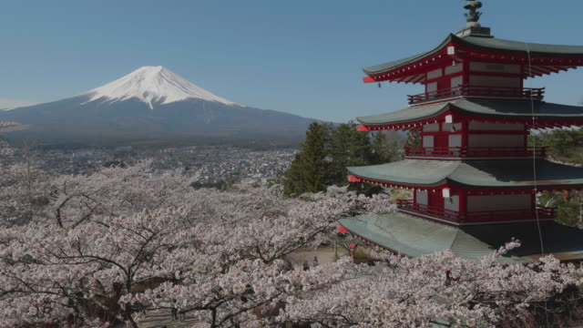 mount fuji and chureito pagoda,yamanashi,japan - mt fuji stock videos & royalty-free footage