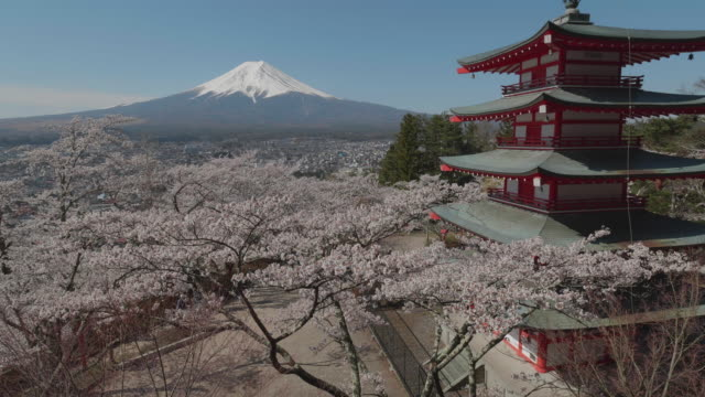 mount fuji and chureito pagoda,yamanashi,japan - pagode stock-videos und b-roll-filmmaterial