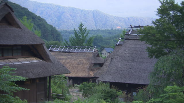 Mount Fuji looms over buildings with thatched roofs.