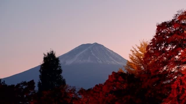 mount fuji over maple garden of autumn festival light up - shinto shrine stock videos & royalty-free footage