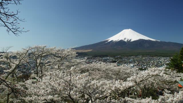 vidéos et rushes de mount fuji  - préfecture de yamanashi
