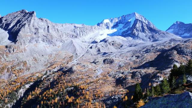 vídeos y material grabado en eventos de stock de monte hochgall en tirol del sur en otoño - pinaceae