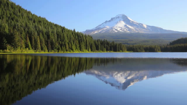 vídeos y material grabado en eventos de stock de ls mount hood reflecting off trillium lake / oregon, usa - trillium