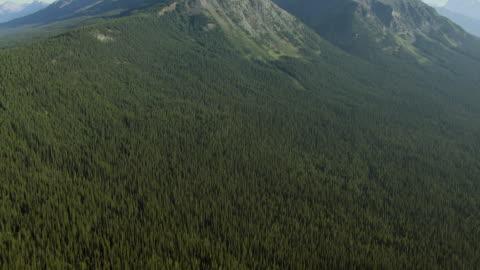 mount hungabee in canadian rockies - banff nationalpark stock-videos und b-roll-filmmaterial