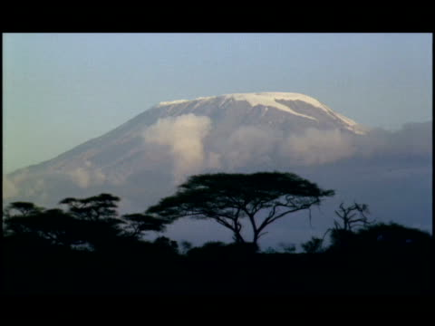 ms, mount kilimanjaro with silhouettes of acacia trees in foreground, tanzania - naturwunder stock-videos und b-roll-filmmaterial