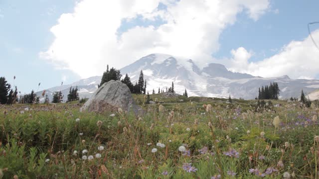stockvideo's en b-roll-footage met mount rainier (/reɪˈnɪər/), also known as tahoma or tacoma, is a large active stratovolcano in the cascade range of the pacific northwest, located in mount rainier national park about 59 miles (95 km) south-southeast of seattle.[4] with a summit elevat - washington state