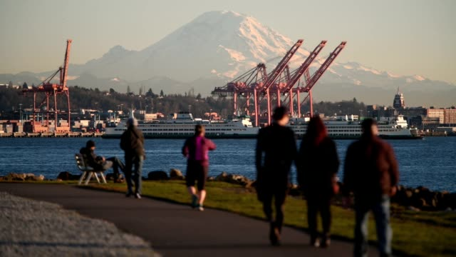 mount rainier - seattle stock-videos und b-roll-filmmaterial