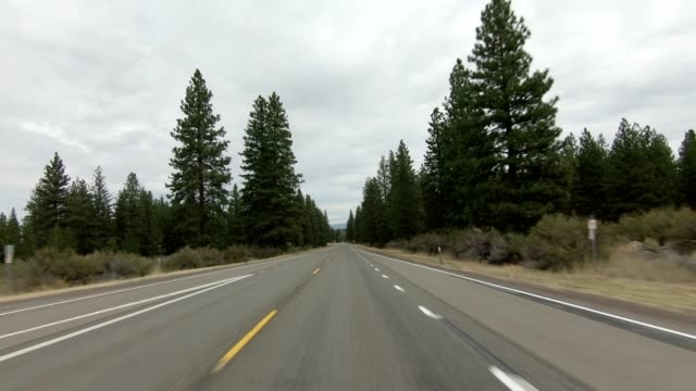 vídeos de stock e filmes b-roll de mount shasta iv synced series front view driving process plate - abeto