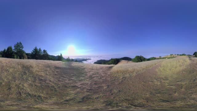 Mount Tamalpais, California