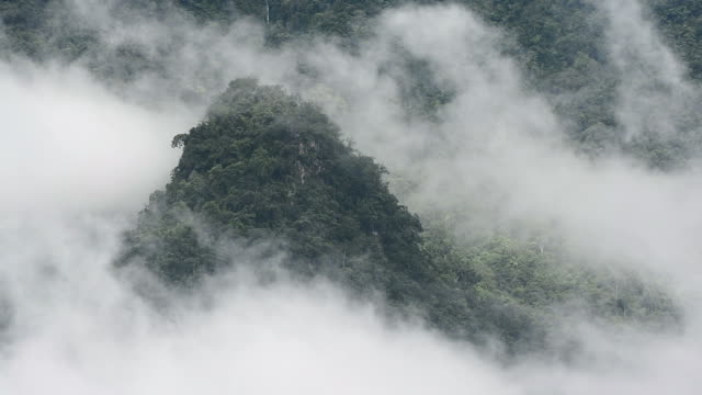 mountain and fog
