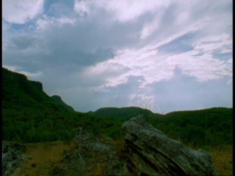 wa mountain and sky scenic, bandhavgarh national park, india - national icon stock videos and b-roll footage